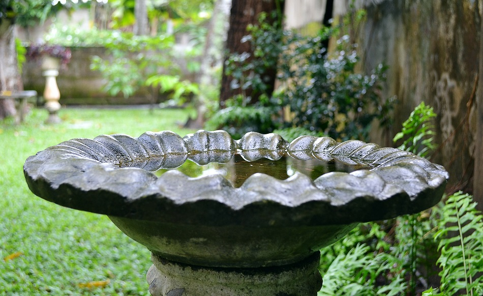 Buy A Bird Bath For Your Garden | Junk Mail